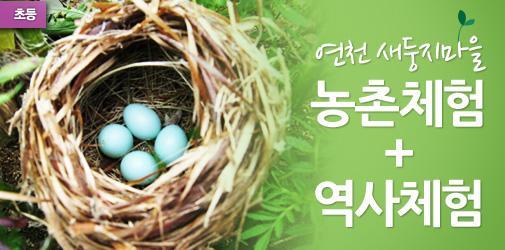 연천 새둥지마을 농촌체험 + 역사체험
